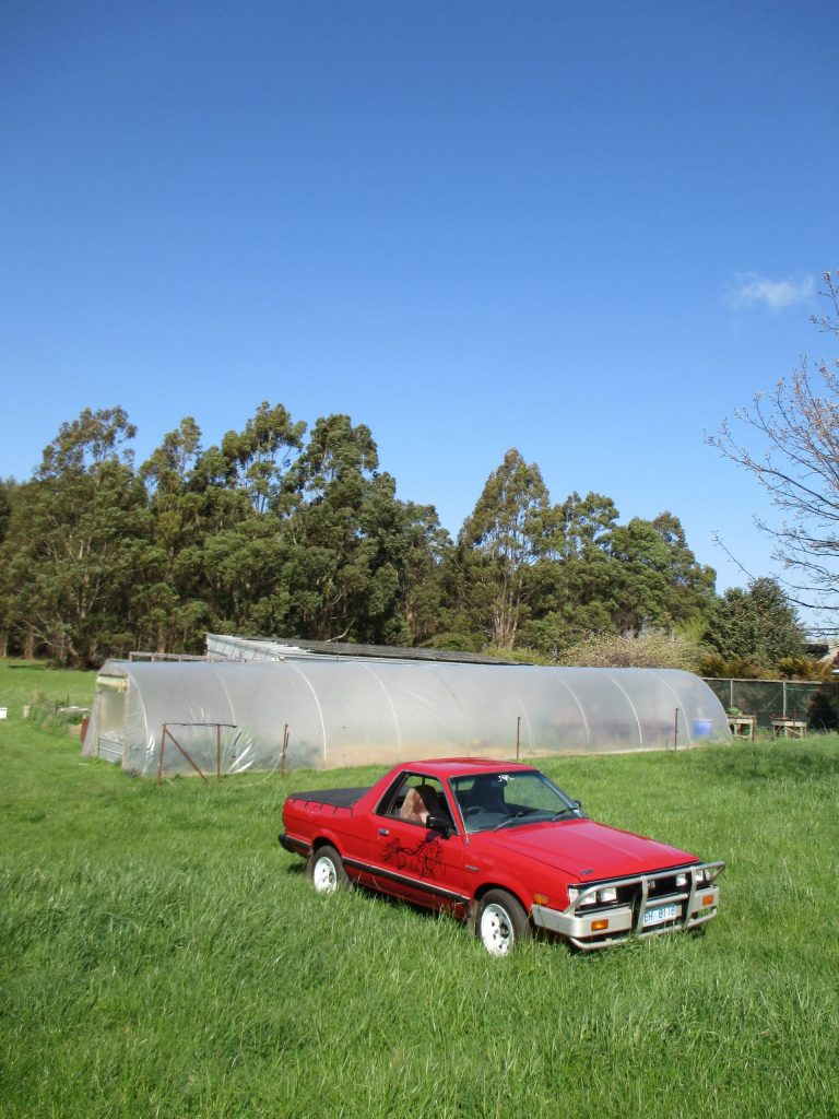 Brumby with Greenhouse and Solar