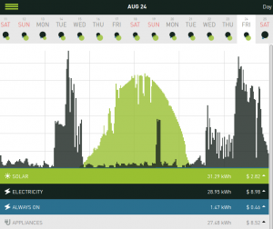 An August day showing solar production (green) and household electricity usage (grey)